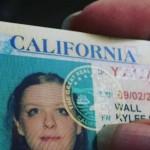 Legit Californian